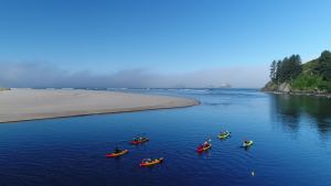 Safari Town Kayak Tours